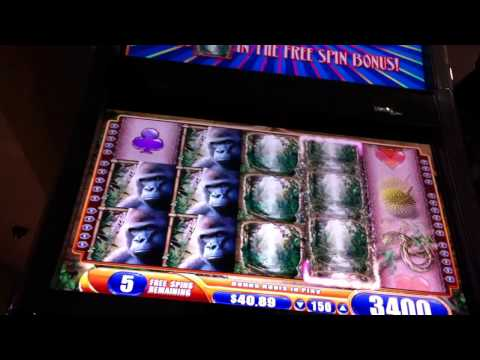 Big Bonus Queen of the Wild Slot Machine 20 spins re-trigger