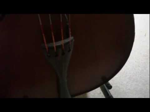 upright bass - Linear- Fantasia model