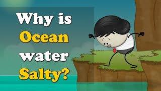 Why is Ocean water Salty? | #aumsum #kids #ocean #water #salty