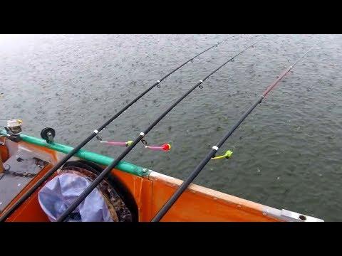 Безумная рыбалка в ливень ! КАРП ЛЕЩ КАРАСЬ