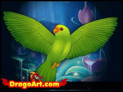 How to Draw a Bird Flying Simple Draw a Flying Bird Step