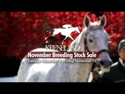 Keeneland's November Breeding Stock Sale