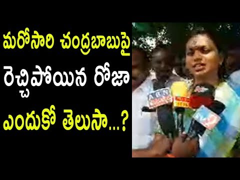 YSRCP MLA Roja Visits Srikakulam Titli Toofan Meets People  Facing Problems in TDP | Cinema Politics
