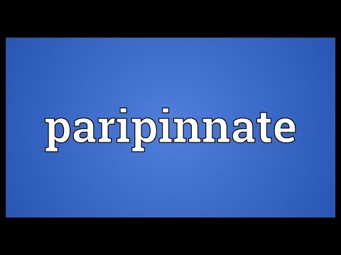 Header of paripinnate