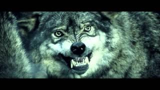 Boris the Blade Like wolves Lyric Video