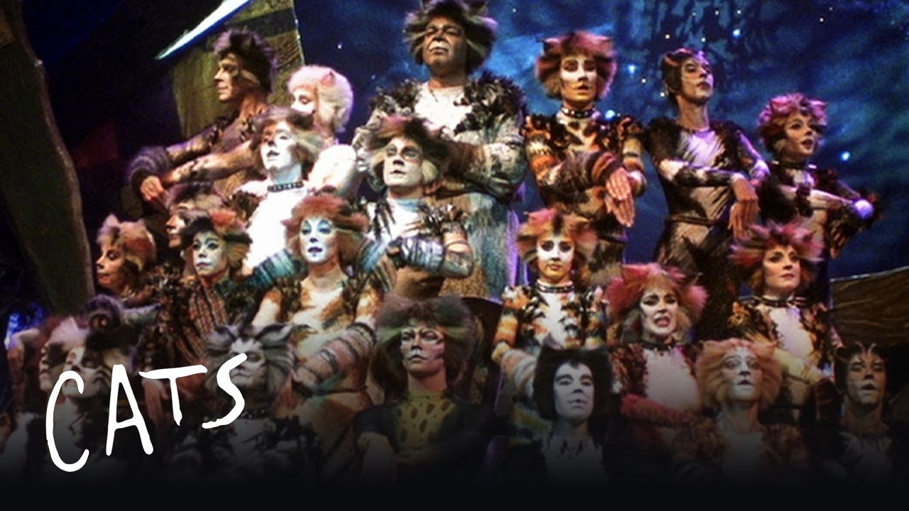 cats the musical - montage