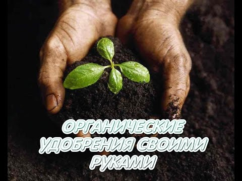 Семеноводство своими руками