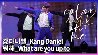 강다니엘(Kang Daniel) - 뭐해(What are you up to)  @Showcase Stage 'color on me'