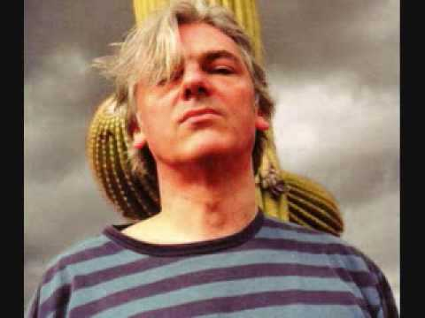 Robyn Hitchcock - More Than This