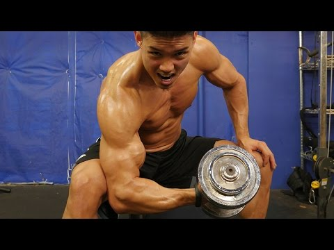 Upper Body Shredder Workout - FLEX FRIDAYS