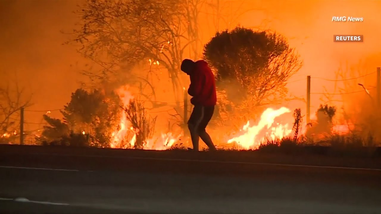 Man rescues rabbit from California wildfires