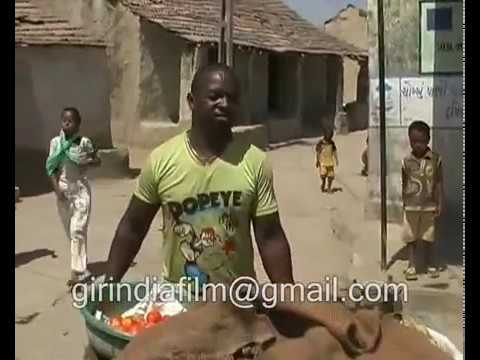 A little africa in india, siddi community live in jambur village near gir forest in gujarat thumbnail