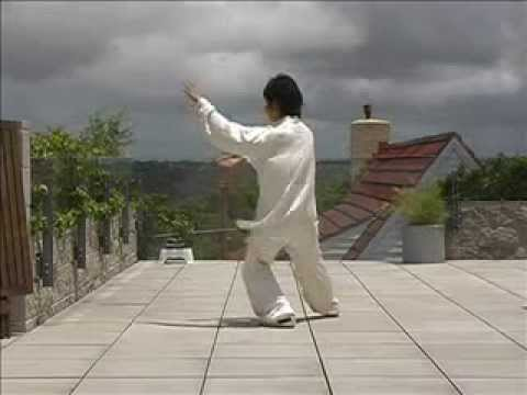 24 Form Tai Chi With Gold Medal Champion video