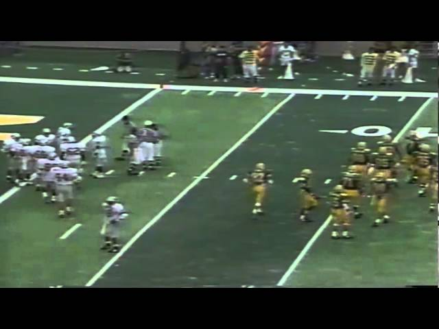 Oregon WR Brian Brown remarkable first down catch vs. WSU 9-07-91