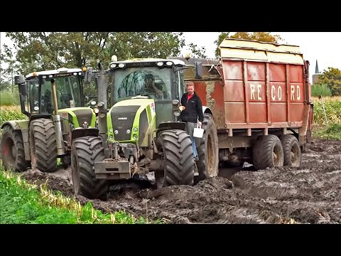 Claas Jaguar 870 | Xerion 3300 | Verhoef | modder | mud | Zwartebroek | NL | Mais 2013 | Maize.