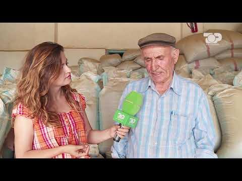 Ne Shtepine Tone, 14 Dhjetor 2016, Pjesa 5 - Top Channel Albania - Entertainment Show