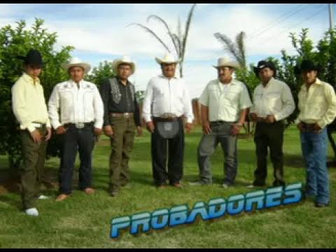 NARCO CORRIDO POBLANO DE LOS PROBADORES DEL NORTE