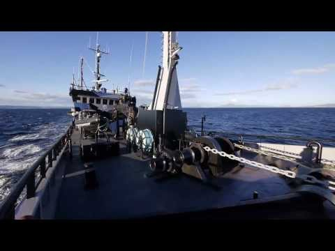 Sea Shepherd's Bob Barker Crew Prepares for Operation Divine Wind