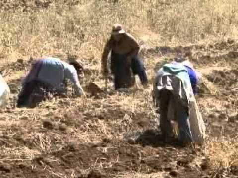 documental Mujeres del Campo