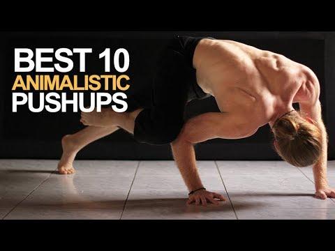 Best 10 Animalistic Push Up Variations