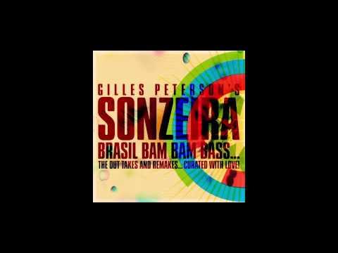 Sonzeira - America Latina (FaltyDL Remix)