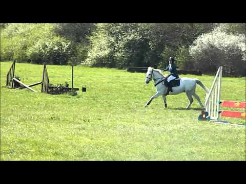 Kilduff Scotty - Show Jumping @ SWRC 26/04/15