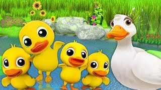 Five Little Ducks Nursery Rhymes & Kids Songs | + More Nursery Rhymes Baby Songs