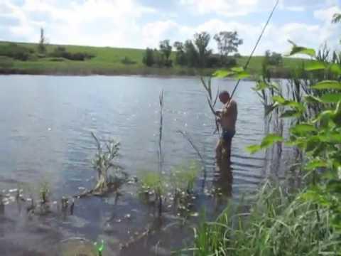 платная рыбалка в харьковской области ставки