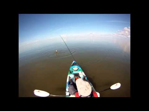 Kayak Fly Fishing for Bull Redfish