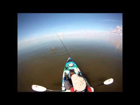 Kayak Fly Fishing for Bull Redfish