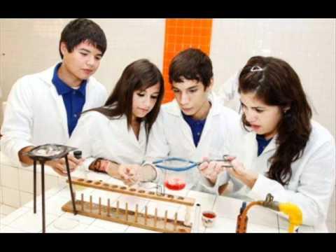 Quimico Biologo Clinico Quimico Biologo Clinico