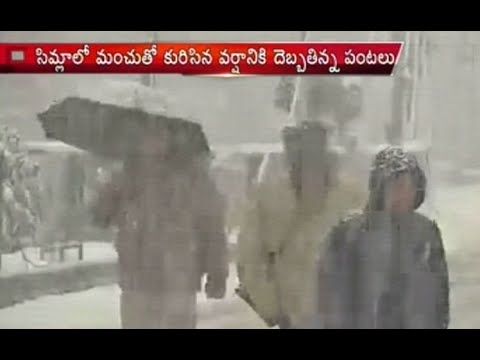 Heavy Snowfall in Jammu & Kashmir, Trouble to Locals - Tourist Enjoy