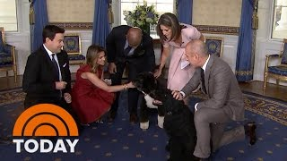 It's Bo And Sunny! The Obama Family Dogs Join The TODAY White House Tour | TODAY