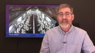 Two Witnesses - Israeli News Live