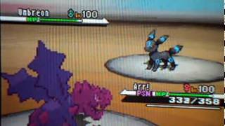 Pokemon Black/White wfi battle #5 vs. Umbreon Dude