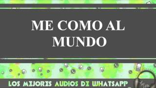 Me Como Al Mundo - Conversaciones De Whatsapp - Los Mejores Audios Y Videos Whatsapp