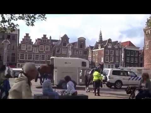 Голландия, Амстердам   Полиция и кони