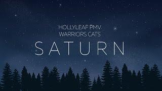 [WARRIORS] Hollyleaf PMV|Saturn