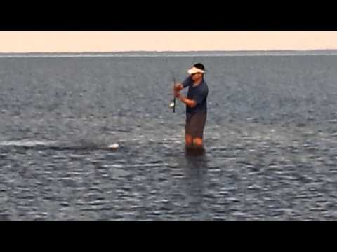 Johnny wade fishing for redfish in Apalachicola