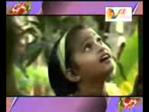 Haseem Kollam 123musiq video