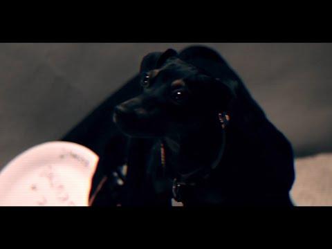 AllSuckAll - Te vagy (Official Music Video)