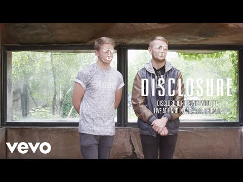 Disclosure - Disclosure Presents WILD LIFE - Live at Lincoln Park Zoo, Chicago