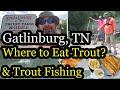 Gatlinburg, TN Where to Eat Trout? Trout Fishing @ English Mountain Trout Farm & Grill