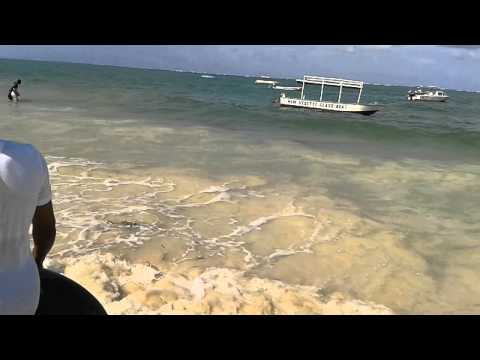 Mombasa Raha.. Pcea Nairobi North Staff Retreat 14 video