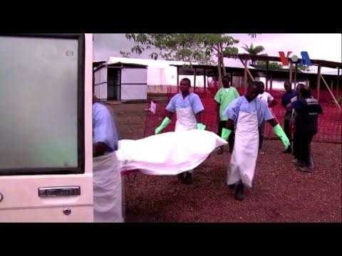 Số người tử vong vì Ebola gia tăng nhanh chóng