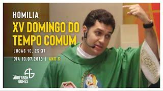 HOMILIA 15º Domingo do Tempo Comum (Lc 10, 25-37/Ano C) - 10/07/16