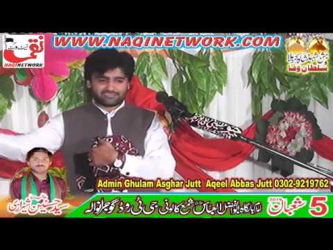 Zakir Qalab Abbas Alvi 5 Shahban 2019 Jashin Pak Shama Colony Gujranwala