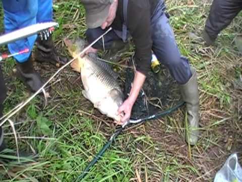 рыбалка в ставропольском крае на карпа видео