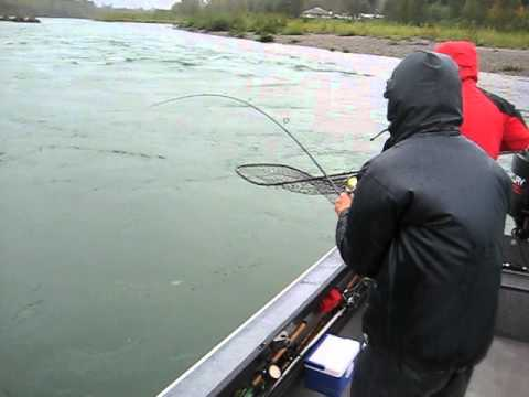 Cowlitz River Silver Salmon Fishing