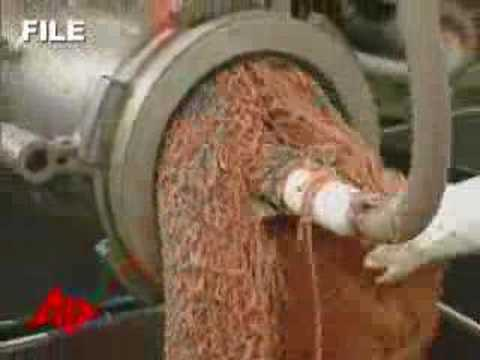 Video Spawns Largest Beef Recall in U.S.